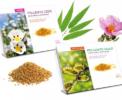 pollen de ciste et de saule