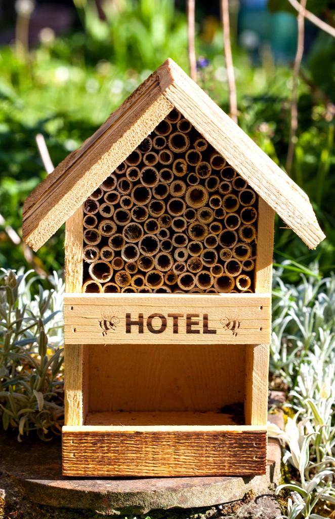au printemps ouvrez un h tel pour les abeilles sauvages les tr sors de la ruche. Black Bedroom Furniture Sets. Home Design Ideas