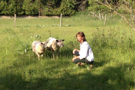 Marie-Cécile en causette avec les moutons au Domaine Apicole de Chezelles