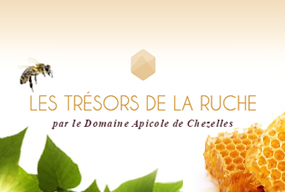Les trésors de la ruche